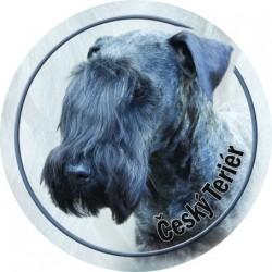 Tschechischer Terrier