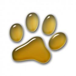 3D Pfote - Gold 5x5 cm
