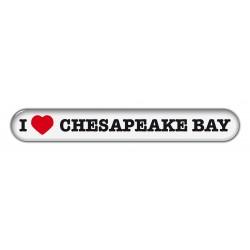 Chesepeake Bay Retriever