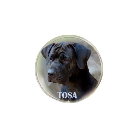 Tosa Inu
