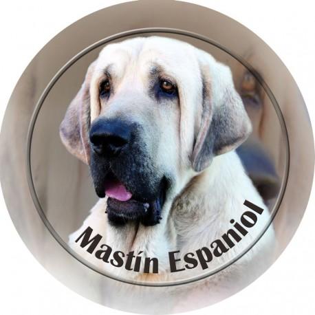 Mastín Espaňol
