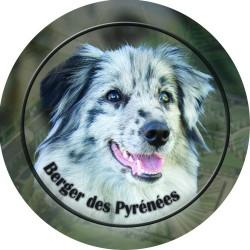 Berger des Pyrénées á poil long