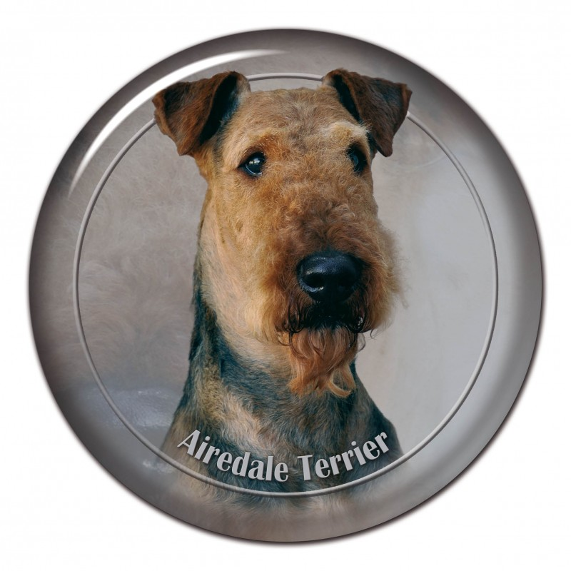 Airedale terier