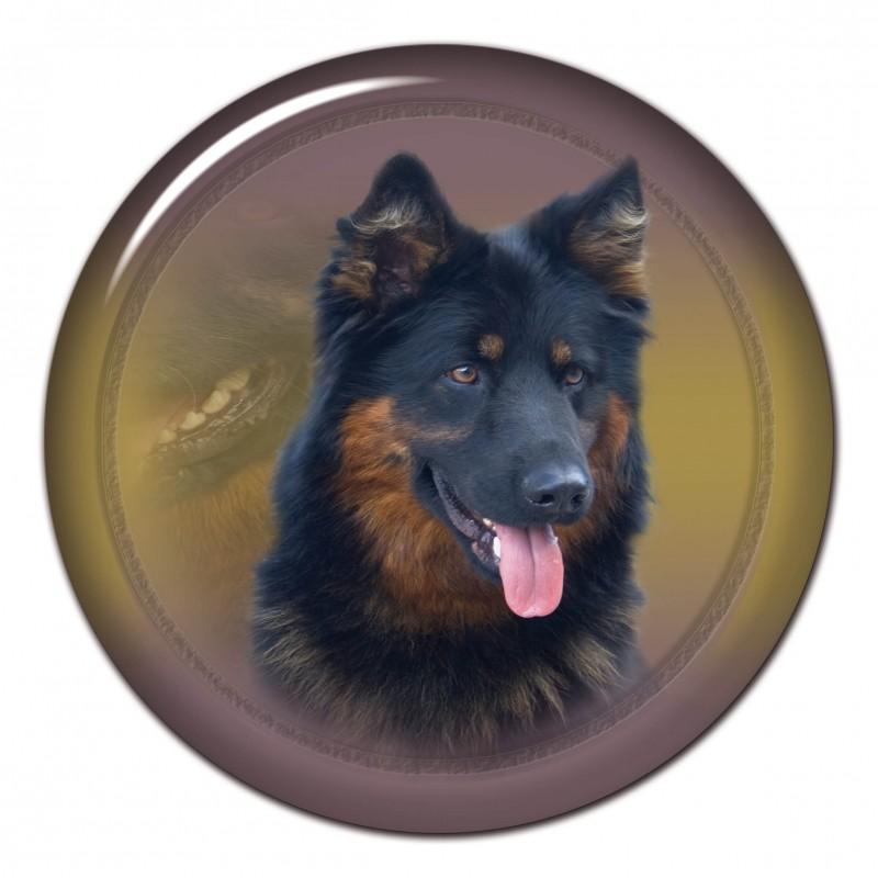 Alt Deutsche Schäfferhund
