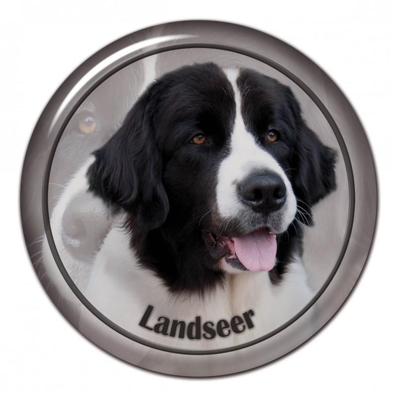 Landseer