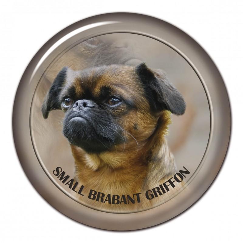 Brabant Griffon