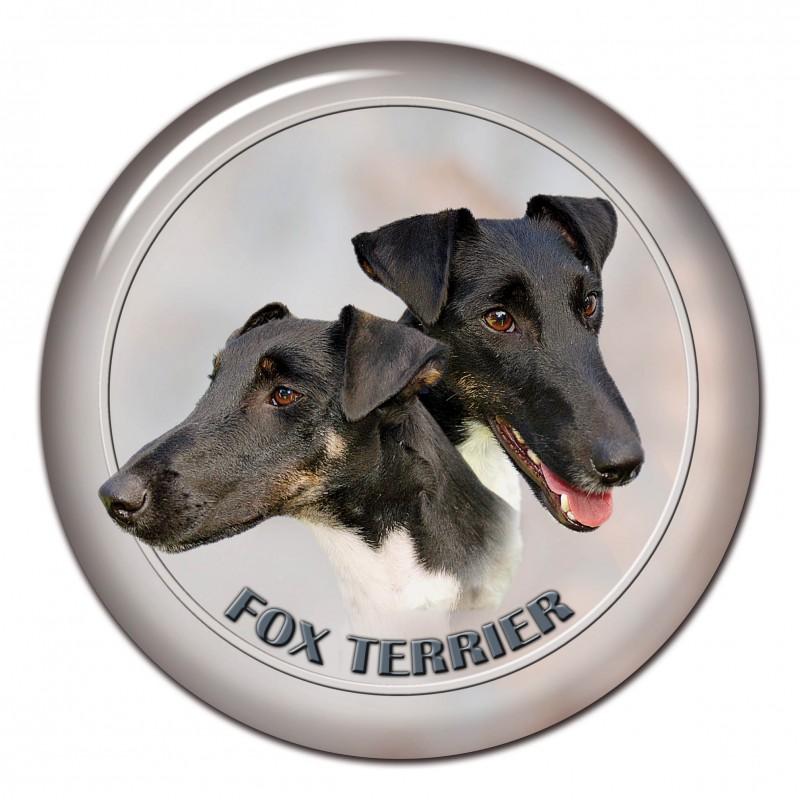 Foxterrier