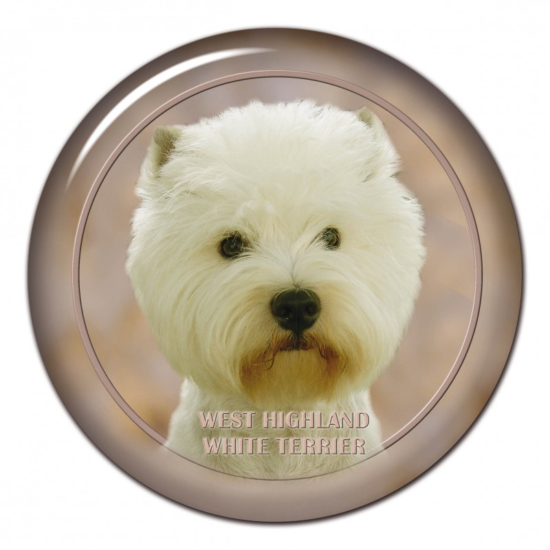 West Highland WhiteTerrier
