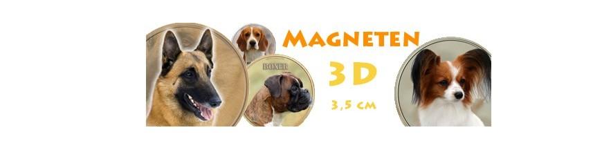3D Magneten